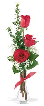 Ankara Gölbaşı çiçek gönderme  mika yada cam vazoda 3 adet kirmizi gül