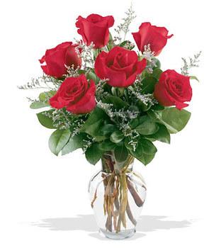 Ankara Gölbaşı çiçek gönderme  cam yada mika vazoda 6 adet kirmizi gül