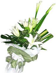 çiçek siparişi Gölbaşı çiçekçiler  3 dal kazablanka çiçegi ve yesillikler