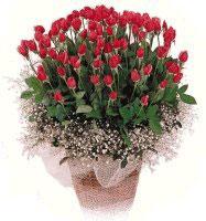 Ankara Gölbaşı çiçek gönderme  61 adet kirmizi gül buketi sepet tanzimi