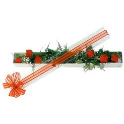 Gölbaşı çiçekçi güvenli kaliteli hızlı çiçek  6 adet kirmizi gül kutu içerisinde