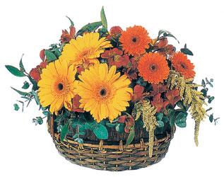 Gölbaşı çiçek gönder cicekciler , cicek siparisi  sepet içerisinde kir çiçekleri tanzimi