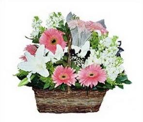 Gölbaşı çiçek yolla online çiçekçi , çiçek siparişi  karisik çiçekler sepet içerisinde