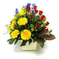 Gölbaşı ankara çiçek gönderme sitemiz güvenlidir  9 adet gül ve kir çiçekleri cam yada mika vazoda