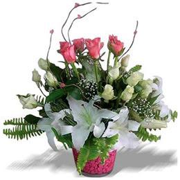Ankara Gölbaşı çiçek gönderme  cam yada mika içerisinde 7 beyaz 6 kirmizi 1 dal kazablanka