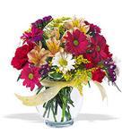 Gölbaşı çiçek online çiçek siparişi  cam yada mika vazo içerisinde karisik kir çiçekleri