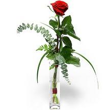 Ankara Gölbaşındaki çiçekçiler ankara çiçek satışı  Sana deger veriyorum bir adet gül cam yada mika vazoda