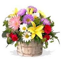 sepette karisik kir çiçekleri  Gölbaşı çiçekçi güvenli kaliteli hızlı çiçek  görsel sepet
