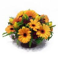 gerbera ve kir çiçek masa aranjmani  Ankara çiçekçi Gölbaşı İnternetten çiçek siparişi