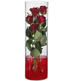 cam içerisinde 7 adet kirmizi gül  Gölbaşı çiçek yolla online çiçekçi , çiçek siparişi