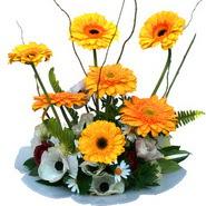 camda gerbera ve mis kokulu kir çiçekleri  Gölbaşı anneler günü çiçek yolla