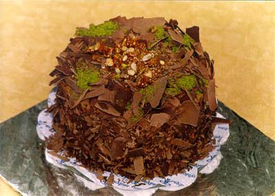 Çikolatali 4 ila 6 kisilik yas pasta  Gölbaşı çiçek gönder cicekciler , cicek siparisi
