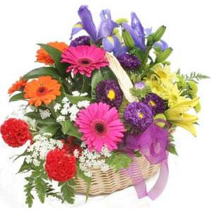 Karisik mevsim çiçekleri sepeti  Gölbaşı çiçek yolla , çiçek gönder , çiçekçi