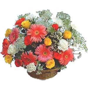 Sepet içerisinde karisik kir çiçekleri  Gölbaşı çiçekçi güvenli kaliteli hızlı çiçek
