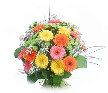 13 adet gerbera çiçegi buketi  Gölbaşı ankara çiçek gönderme sitemiz güvenlidir