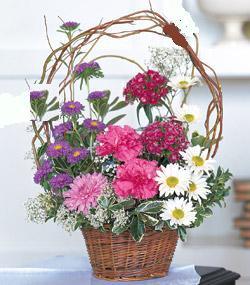 Görsel kir çiçegi sepeti mis kokulu  Gölbaşı çiçekçi güvenli kaliteli hızlı çiçek