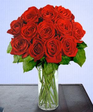 Anneme 12 adet cam içerisinde kirmizi gül  Gölbaşı çiçekçi güvenli kaliteli hızlı çiçek
