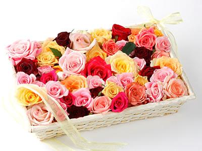 33 adet renkli gül sepet içerisinde  Gölbaşı ankara çiçek gönderme sitemiz güvenlidir