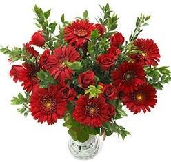 5 adet kirmizi gül 5 adet gerbera aranjmani  ankara Gölbaşı çiçek mağazası , çiçekçi adresleri