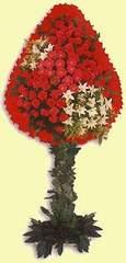 Ankara Gölbaşı 14 şubat sevgililer günü çiçek  dügün açilis çiçekleri  Ankara Gölbaşı hediye çiçek yolla