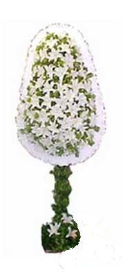 Gölbaşı çiçekçi güvenli kaliteli hızlı çiçek  nikah , dügün , açilis çiçek modeli  Gölbaşı ankara çiçek gönderme sitemiz güvenlidir