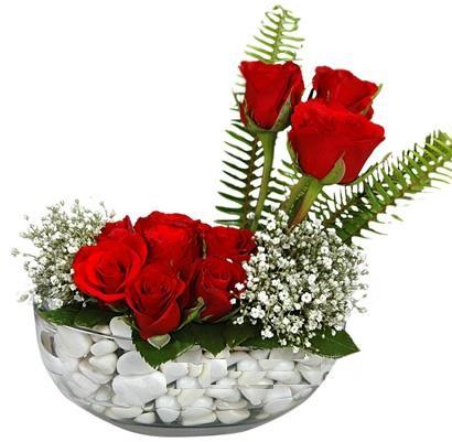 cam içerisinde 9 adet kirmizi gül  Ankara çiçekçi Gölbaşı İnternetten çiçek siparişi