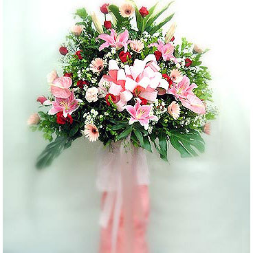 Gölbaşı çiçek kaliteli taze ve ucuz çiçekler   perförje çiçegi dügün çiçekleri