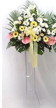 Gölbaşı ankara çiçek gönderme sitemiz güvenlidir   perförje çiçegi dügün çiçekleri