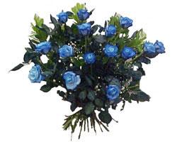 Ankaradaki çiçekçiler Gölbaşı cicek , cicekci  9 mavi gül güzel bir buket
