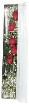 Gölbaşı çiçekçi güvenli kaliteli hızlı çiçek   5 adet gülden kutu güller