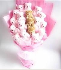 17 adet pelus ayicik buketi  Ankaradaki çiçekçiler Gölbaşı cicek , cicekci