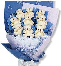 9 adet pelus ayicik buketi  Ankara Gölbaşı çiçek gönderme