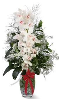 Gölbaşı çiçekçi güvenli kaliteli hızlı çiçek  cam içerisinde 1 dal orkide çiçegi