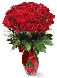 19 adet essiz kalitede kirmizi gül  Ankara Gölbaşındaki çiçekçiler ankara çiçek satışı