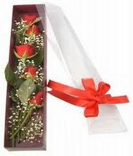 kutu içinde 5 adet kirmizi gül  Gölbaşı çiçek yolla , çiçek gönder , çiçekçi