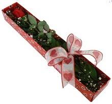 Tek kirmizi gül kutu içerisinde  çiçek siparişi Gölbaşı çiçekçiler