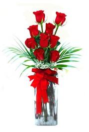 Gölbaşı anneler günü çiçek yolla  9 adet mika yada cam vazoda gül tanzimi