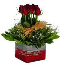 Ankara Gölbaşı 14 şubat sevgililer günü çiçek  7 adet mika yada cam vazoda gül tanzimi