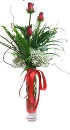 Gölbaşı çiçekçi güvenli kaliteli hızlı çiçek  3 adet kirmizi gül vazo içerisinde