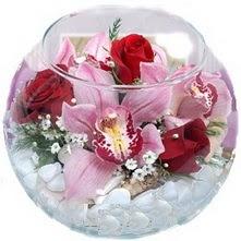 Gölbaşı anneler günü çiçek yolla  fanus içinde 1 kandil orkide 3 gül aranjmani