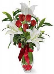 Ankara çiçekçi Gölbaşı İnternetten çiçek siparişi  5 adet kirmizi gül ve 3 kandil kazablanka