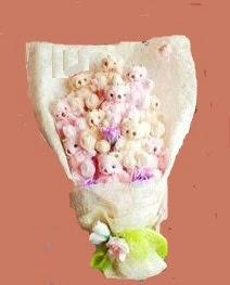 17 adet pelus ayilardan buket  Gölbaşı Ankara çiçek yolla