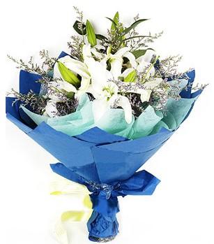 Gölbaşına çiçek , çiçekçi , çiçekçilik  4 adet dal kazablankadan görsel buket