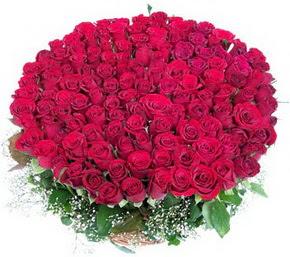 Ankara Gölbaşı çiçek siparişi vermek  100 adet kırmızı gülden görsel buket