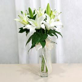 Gölbaşına çiçek , çiçekçi , çiçekçilik  2 dal kazablanka ile yapılmış vazo çiçeği
