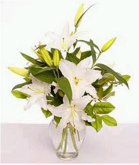 Ankara Gölbaşı 14 şubat sevgililer günü çiçek  2 dal cazablanca vazo çiçeği