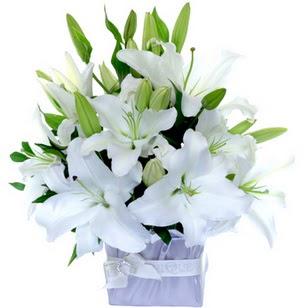 Ankara Gölbaşı çiçekçi uluslararası çiçek gönderme  2 dal cazablanca vazo çiçeği
