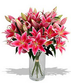 4 dal cazablanca görsel vazosu  Gölbaşı çiçek kaliteli taze ve ucuz çiçekler