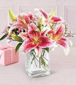 2 dal kazablanka görsel vazosu  Gölbaşı çiçekçi güvenli kaliteli hızlı çiçek