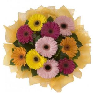 Ankaradaki çiçekçiler Gölbaşı cicek , cicekci  11 adet karışık gerbera çiçeği buketi